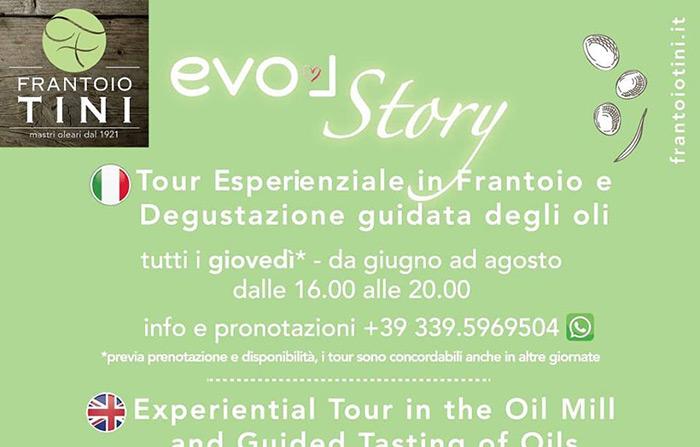 Tour esperienziale in frantoio e degustazione guidata degli oli