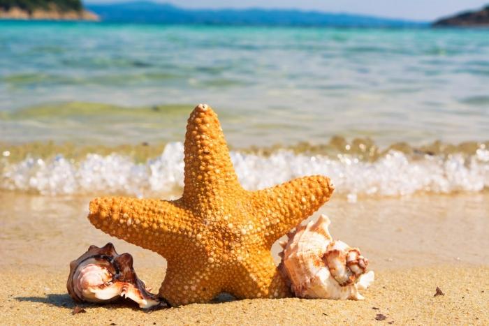 Prenota la Tua Vacanza a Maggio al Village Baia Turchese a partire da € 250